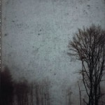 Black Autumn / Ghosts at Our Windows