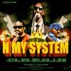 N My System